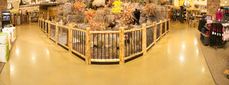 Cabela's Polished Concrete Entryway